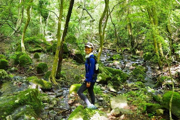 Mount Tsukuba PLAY 2020 SUMMER ヒーリング 夏さんぽ