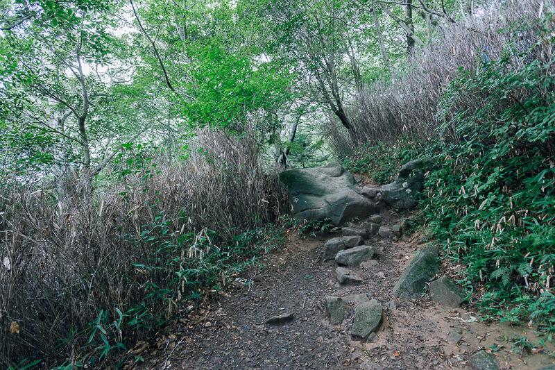 筑波山登山 おたつ石コース 岩