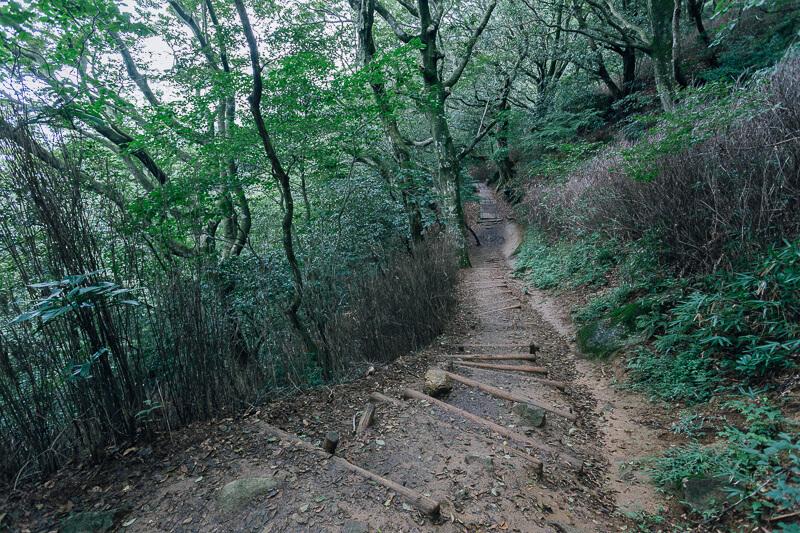 筑波山登山 おたつ石コース 下り坂