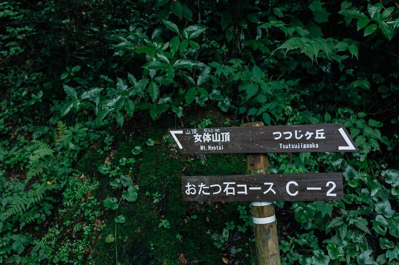 筑波山登山 おたつ石コース 山頂まで900m