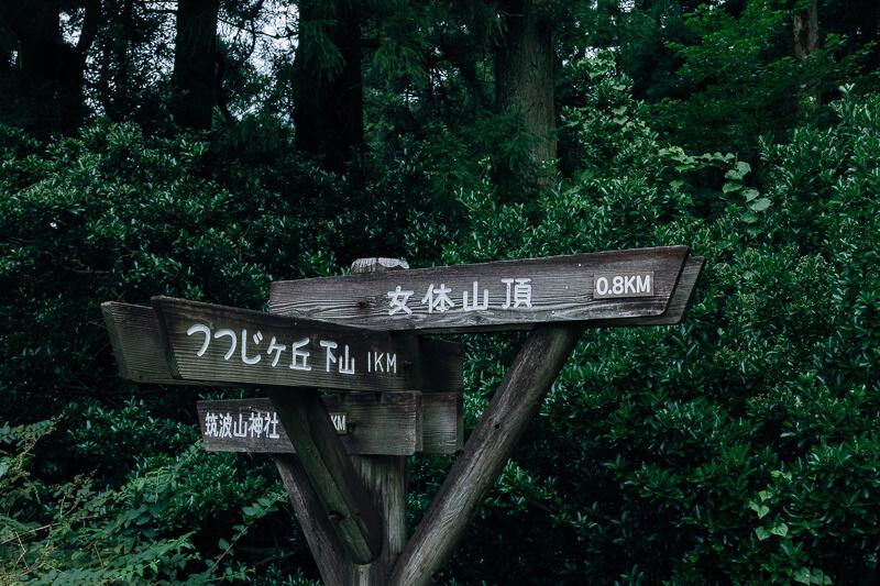 筑波山登山 おたつ石コース 山頂まで800m