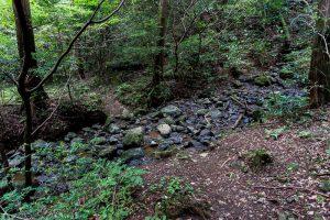 東筑波ハイキングコース登山道。沢が見える