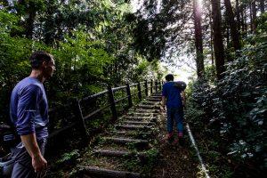 東筑波ハイキングコース登山道
