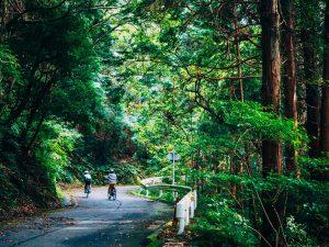 サイクリストの間では有名な名所・不動峠