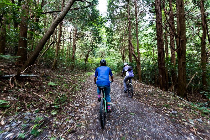 筑波山 東筑波ハイキングコースの林道をMTB(マウンテンバイク)で走る