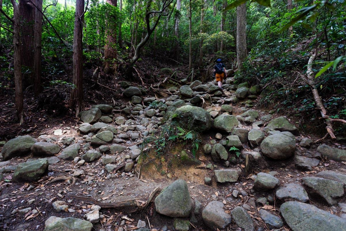 筑波山 御幸ヶ原コースの登山道の風景
